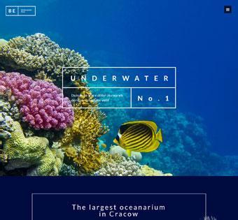 splash home underwater
